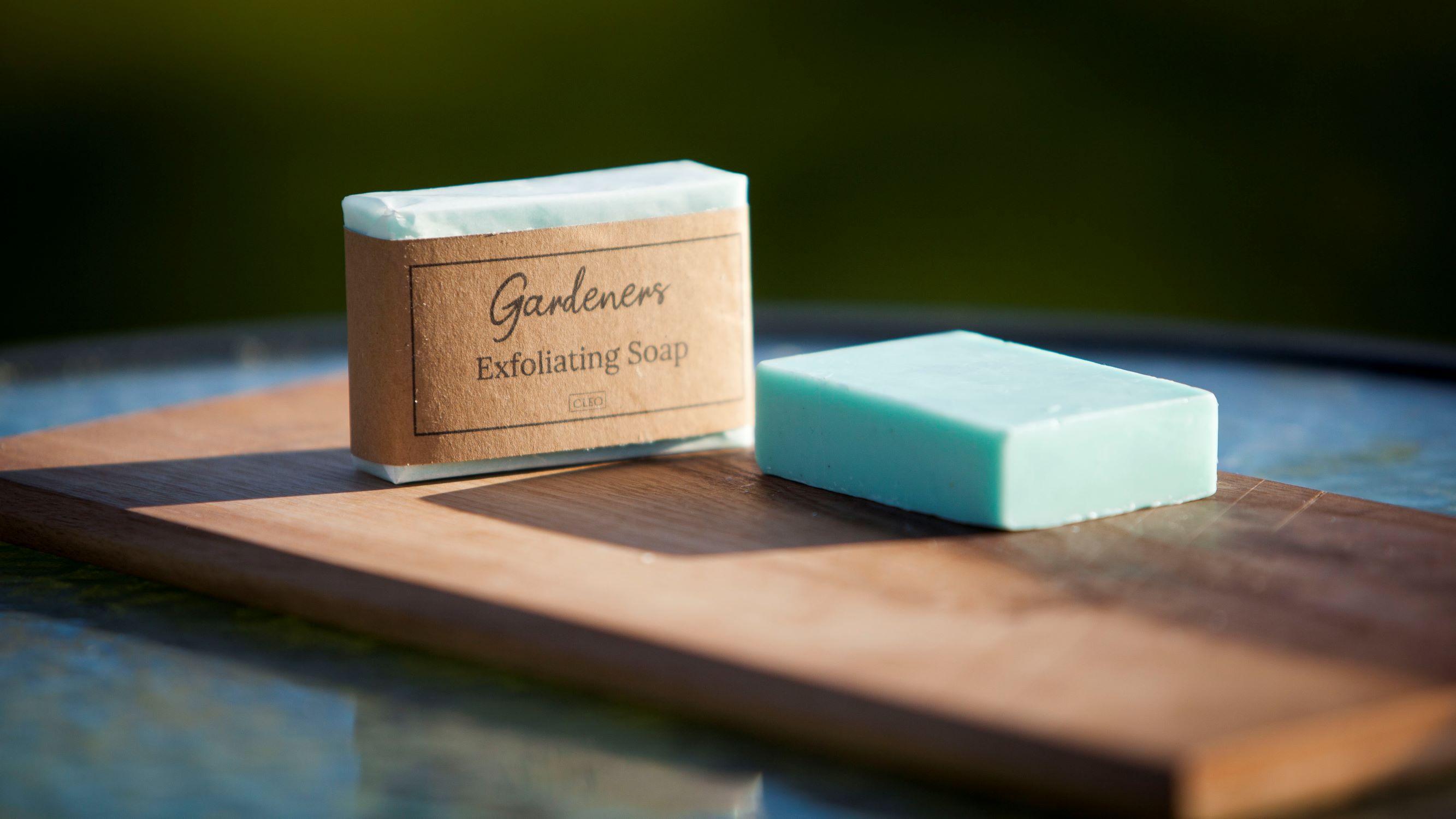 Gardener's Soap (Herb) Image