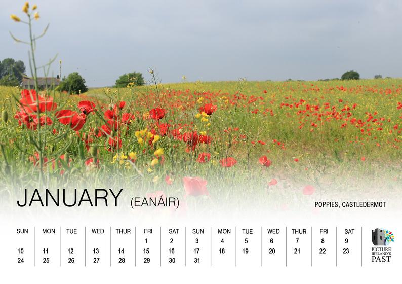 2021 County Kildare desk calendar Image