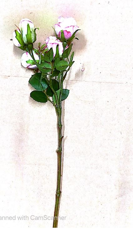 Pink & White Bud Roses on Stem Artificial Image