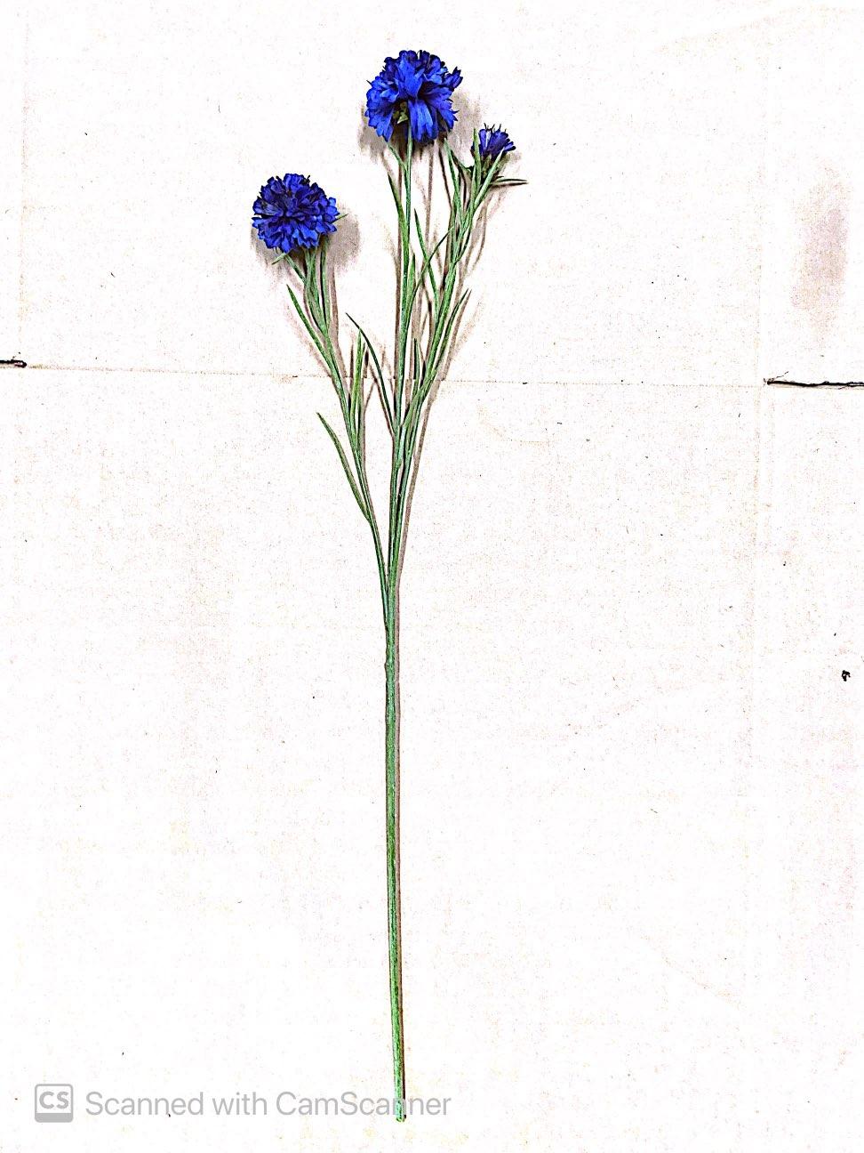 Blue Flowers on Stem Artificial Image