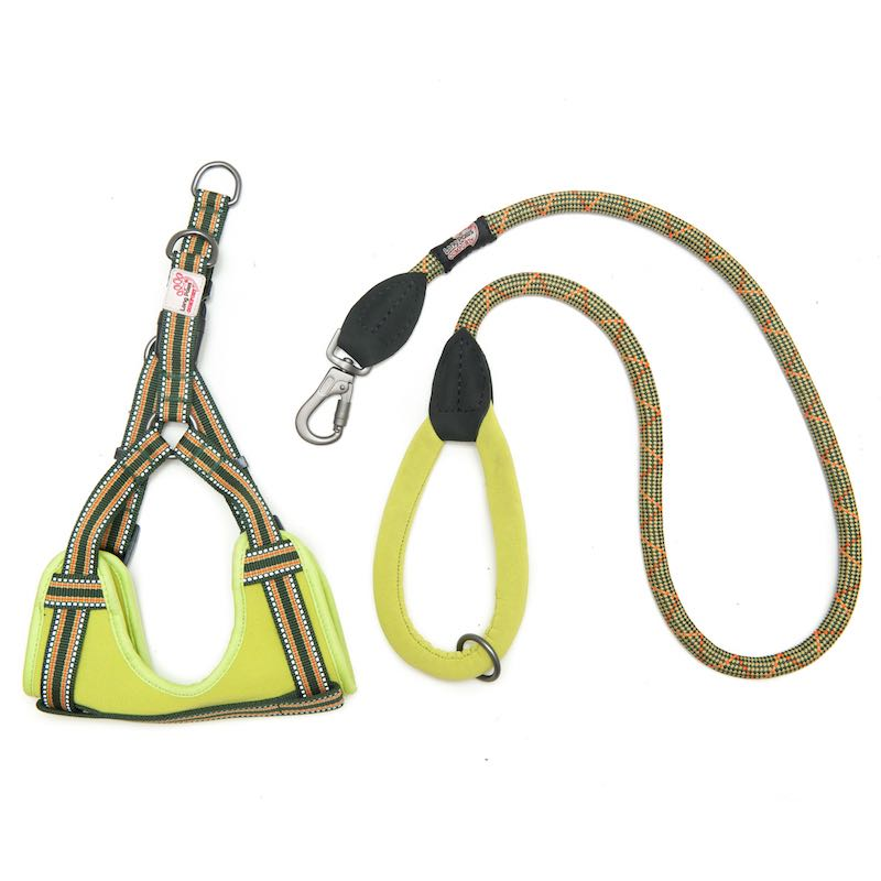 Long Paws Comfort Rope Leash with Matching Harness Green Medium/Long Image