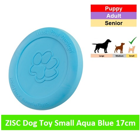 ZISC SMALL - 17 CM * Aqua blue Image