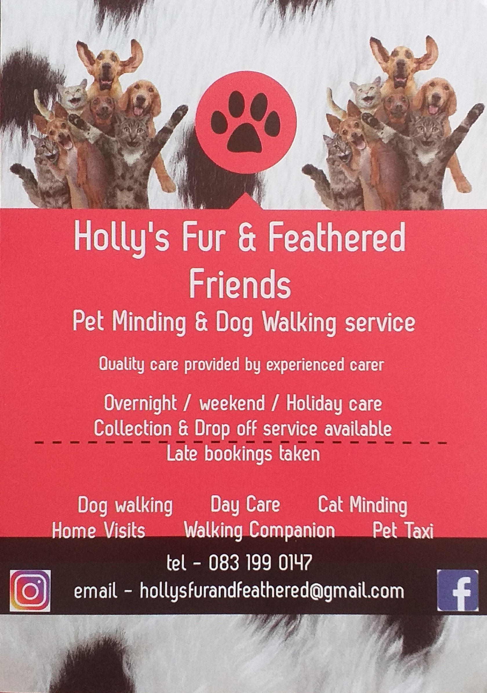 Pet Minding & Dog Walking Service Image