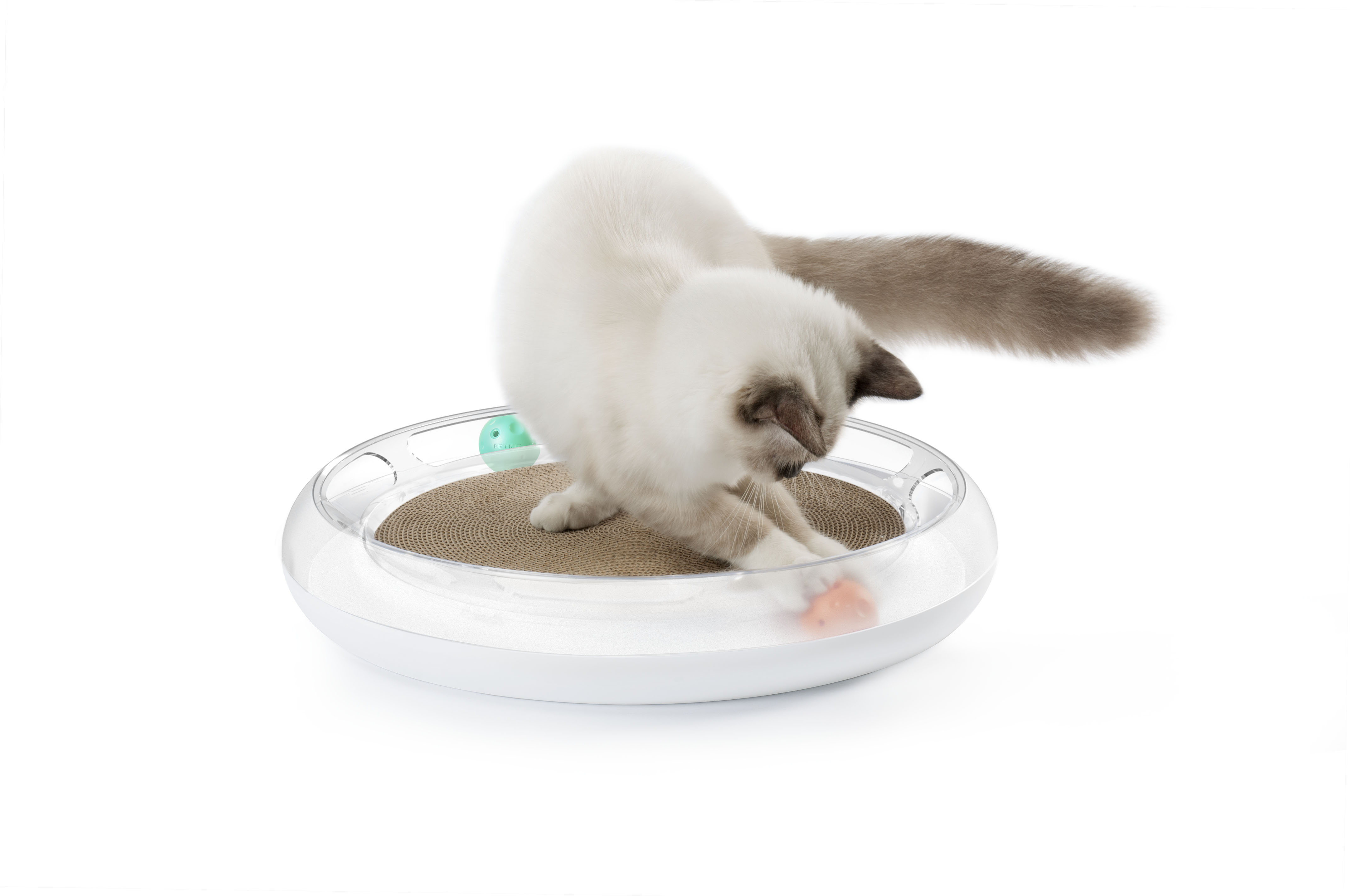 4in1 Cat Scratcher Image
