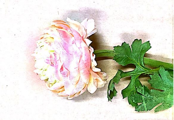 Pink Peony Rose with Leaves Artificial Image