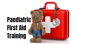 Basic first Aid/Paediatric First Aid (Single) Image