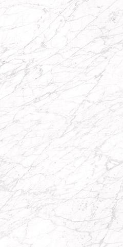 Carrara 60 x 120 Image