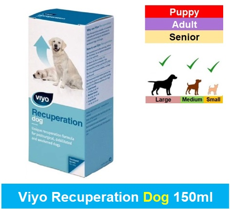 Viyo Recuperation Dog 150ml Image