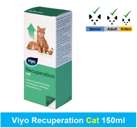 Viyo Recuperation Cat 150ml Image