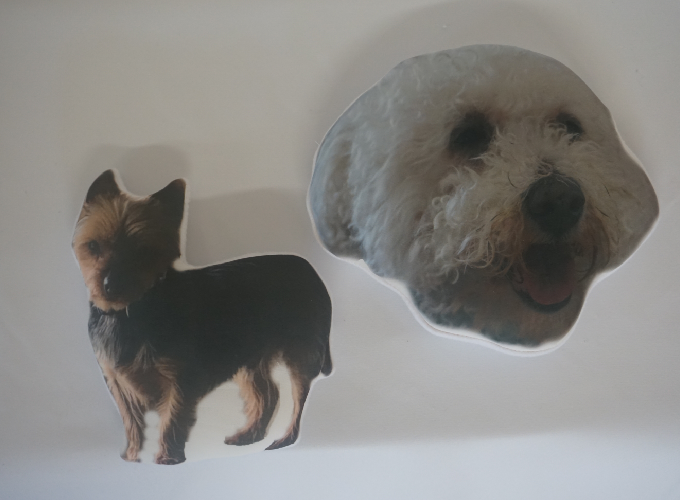 Custom Pet Cushion Image